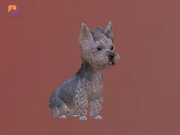반려동물 3D 디자인 이미지 제작